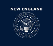 New England football seal shirt